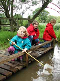 Pond dipping (Image courtesy of Eastleigh Borough Council)